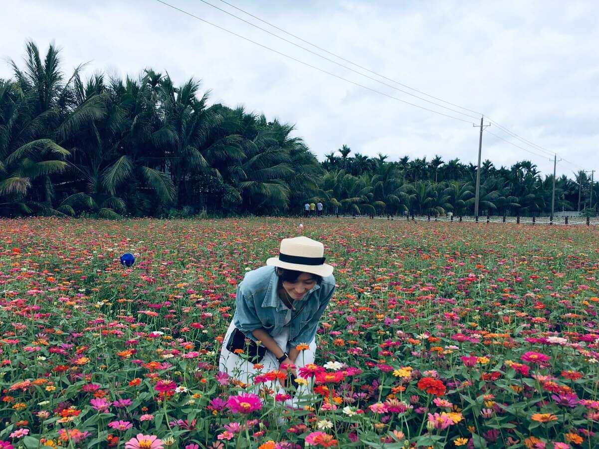 遇见|琼海博鳌的花和海-胡自自博客